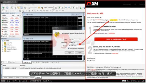 xm mt4 server